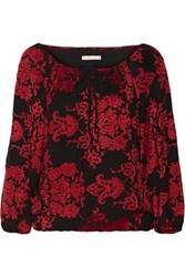 Alice Olivia Naya Embroidered Cady Top