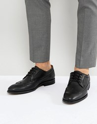 Zign Leather Brogue Lace Ups In Black