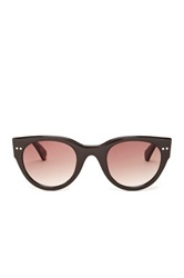Bcbgmaxazria Women's Flash Wayfarer Plastic Sunglasses Brown