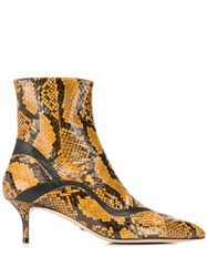 Paula Cademartori Stiletto Ankle Boots Brown