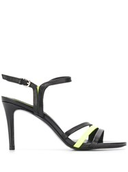 Ash Strappy Buckle Sandals Black