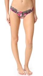 Hanky Panky Panty Party Low Rise Thong Multi