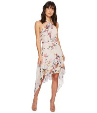 Bishop Young Ana Floral Halter Dress Romance Print Multi