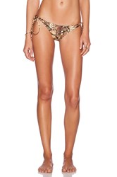 Cami And Jax Cami Jax Elizabeth Bikini Bottom Brown