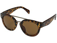Steve Madden Serena Tortoise Fashion Sunglasses Brown