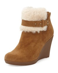 Antonia Sheepskin Wedge Bootie Chestnut Ugg Australia Brown