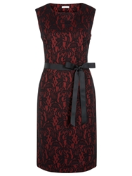 Kaliko Bonded Lace Shift Dress Red