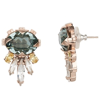 Cabinet Gold Plated Swarovski Crystal Cirripedia Earrings Rose Gold