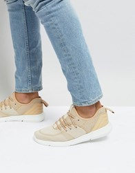 New Look Knitted Trainers In Beige Stone