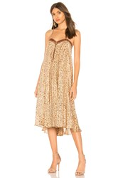 Mes Demoiselles Siam Dress Brown