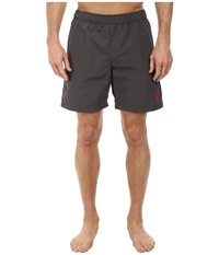 The North Face Class V Rapids Trunk Graphite Grey Men's Shorts Gray