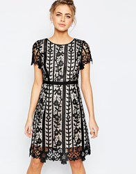 Coast Gressia Mini Dress In Cutwork Lace Mono