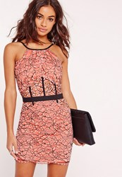 Missguided Petite Exclusive Lace Floral Mini Dress Pink Pink