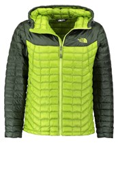 The North Face Thermoball Winter Jacket Olive Light Green