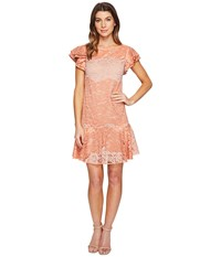 Eva By Eva Franco Lotus Dress Coral Clay Women's Dress Red