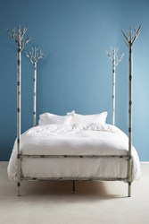Anthropologie Birch Forest Four Poster Bed White