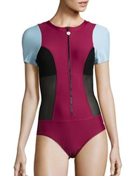 Next Malibu Mesh Accented Performance One Piece Swimsuit Cranberry