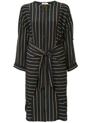 Guild Prime Striped Belted Dress Blue