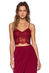 Lovers Friends Remember Me Bralette Wine