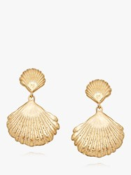 Daisy London Isla Double Shell Drop Earrings Gold