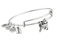 Alex And Ani Monopoly Collection Cat Bangle Rafaelian Silver Finish Bracelet