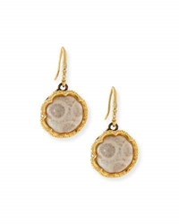 Armenta Old World Fossilized Coral Drop Earrings