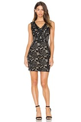 Greylin Sueann Lace Mix Dress Black