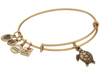 Alex And Ani Charity By Design Turtle Rafaelian Gold Bracelet