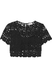 Miguelina Lula Cropped Cotton Guipure Lace Top Black