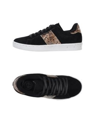 Gourmet Low Tops And Trainers Black