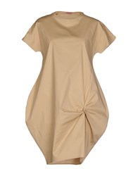 Rose' A Pois Dresses Short Dresses Women Camel