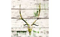Parvez Taj Antler Wood Wall Art