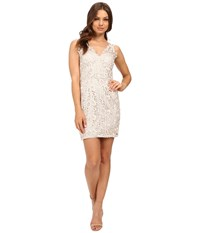 Aidan Mattox V Neck Lace Cocktail Dress Champagne Women's Dress Gold