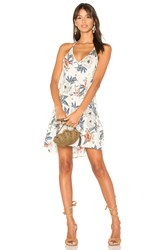Minkpink Garden Party Halter Dress Ivory