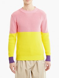 J.W.Anderson Pink Panelled Cotton Sweater