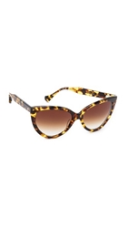 Dita Eclipse Sunglasses Tokyo Tortoise Brown To Clear