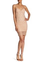 Just Me Sheer Lace Sweetheart Dress Brown