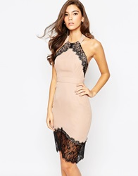 Elise Ryan Bodycon Dress With Asymmetric Lace Hem Minkblacklacetrim