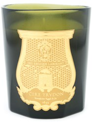 Cire Trudon Trianon Candle Wax Glass Green