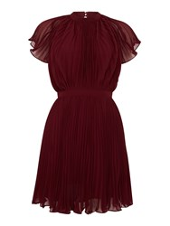 Keepsake Short Sleeve Pleated Detail Fit And Flare Dress Burgundy
