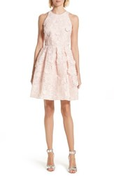 Ted Baker Women's London Sweetee Lace Skater Dress Baby Pink