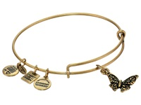 Alex And Ani Butterfly Hanley Center Rafaelian Gold Finish Bracelet
