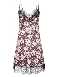 Alice By Temperley Somerset By Alice Temperley Orchid Bloom Chemise Multi