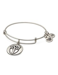 Alex And Ani Unexpected Miracles Charm Bangle Silver