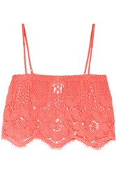 Miguelina Chandler Cropped Crocheted Cotton Top Coral