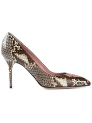 Alexander Mcqueen Pointed Toe Pumps Brown