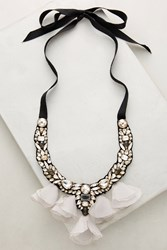 Anthropologie Midnight Tulle Bib Necklace Black