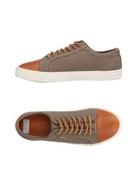 Pointer Sneakers Lead