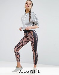 Asos Petite Leopard Print Leggings With Side Stripe Multi