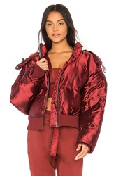 Ivy Park Cropped Shine Puffer Burgundy
